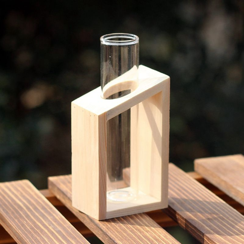 Test Tube in Wooden Stand Flower Pot