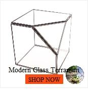 Suspension verre Terrarium moderne artistique mur larmes forme diamant géométrique polyèdre Air plante bijoux titulaire bureau planteur