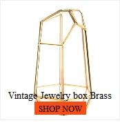 Porte-bijoux de boîte de stockage de Terrarium en verre, boîte de support de planteur de boîte de plante succulente de Terrarium géométrique en verre