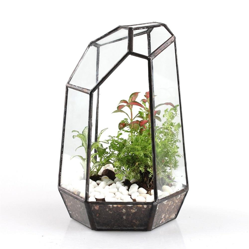 Boîte de Terrarium géométrique en verre | De 19cm de hauteur, plateau de table, plante succulente, jardinière, fleur, mousse, Pot