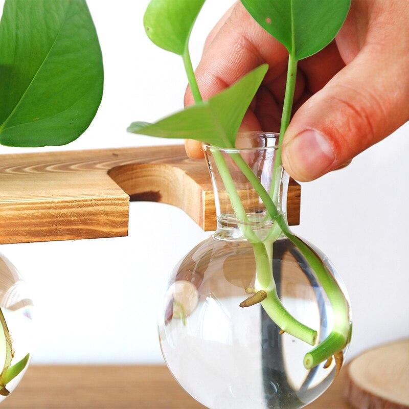 Vase Transparent à plante hydroponique, bouteille en verre, cadre en bois, décor pour salle basse et bureau, Vase décoratif