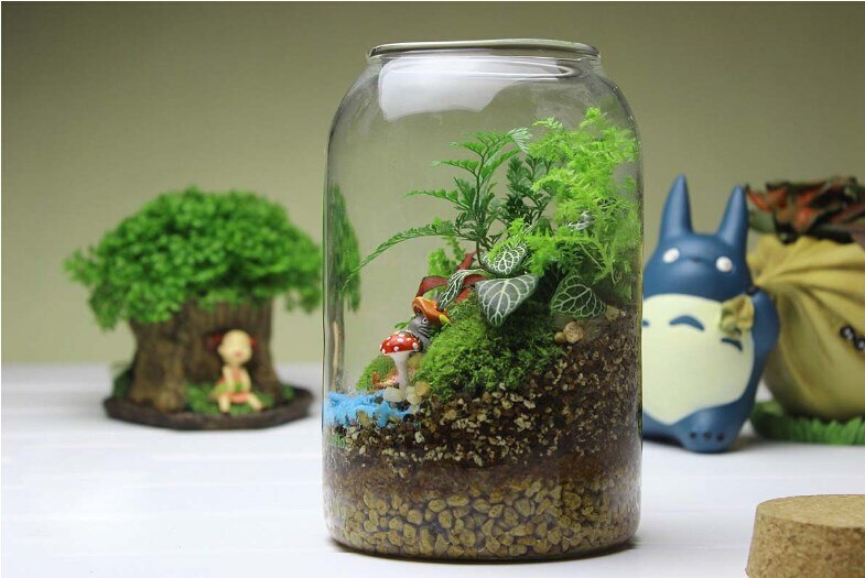 1PC vente chaude rond verre vase à la main succulente Terrarium Kit décoration de la maison cadeau-fond rond OP 164