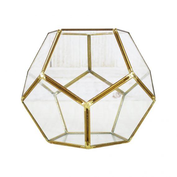 terrarium-en-verre